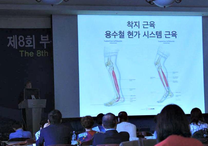 Dr James Stoxen DC lectures in Busan, Korea