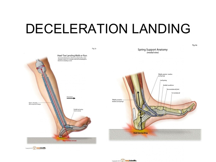 Deceleration Landing